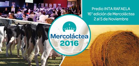 Mercolactea: Curso de Prevención y Manejo de Afecciones Podales en el Ganado Lechero.