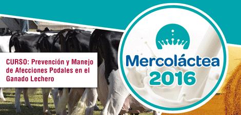 Mercolactea - Curso: Prevención y Manejo de Afecciones Podales en el Ganado Lechero.