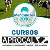 Mercolactea-Web-Cursos
