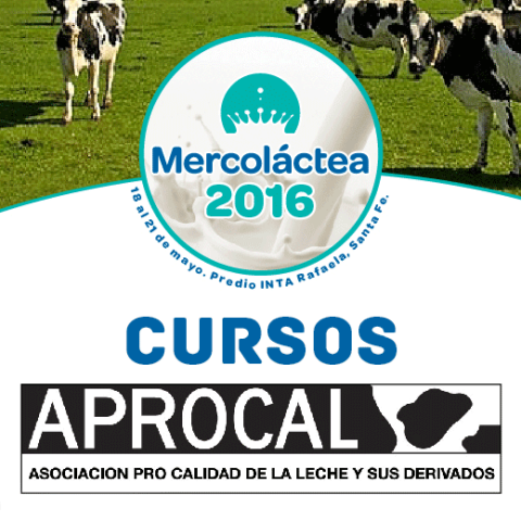 MERCOLACTEA – CURSO: Prevención y manejo de afecciones podales en el ganado lechero