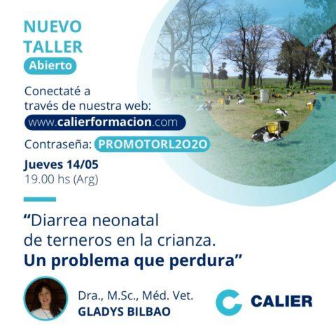 Nuevo taller de Calier