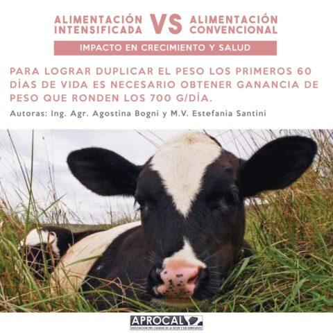 Alimentación convencional VS Alimentación intensificada