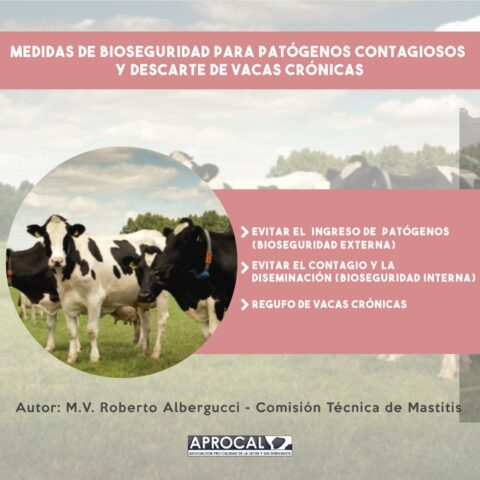Medidas de Bioseguridad para patógenos contagiosos y descartes de vacas crónicas